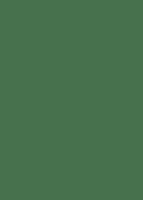 Pumpkin Crown   750 gm piece
